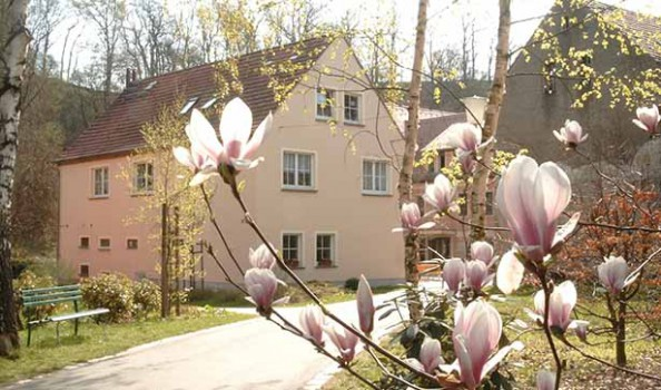 Blick auf das Heizhaus der Tobiasmühle, ein kleines Haus mit rosanem Anstrich, davor blüht ein Strauch